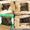 Federal agents: Package labels belie illicit contents