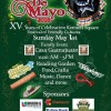 What To Do: Cinco De Mayo in Kennett