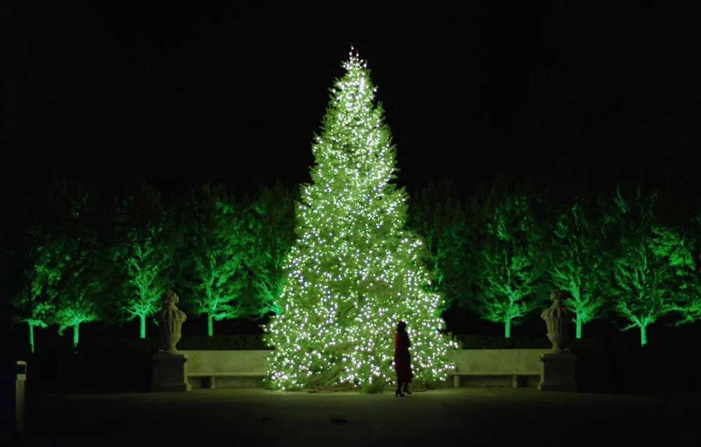 longwood gardens - Black Friday Christmas Lights