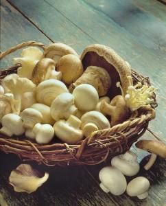 Basket-mushrooms-cropped-
