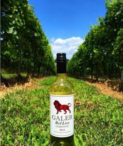 Red-Lion-Chardonnay-in-Red-Lion-Vineyard