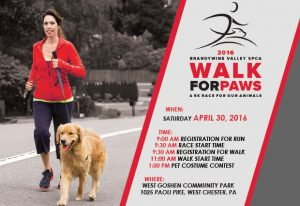 walk for paws