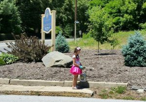 Ollis loves to plant flowers and spray the weeds in the gardens throughout the city.
